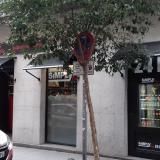 NUEVO SIMPLY CITY EN MADRID